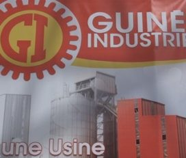 GI Ciments SARL ( Guinée Industries Ciments)